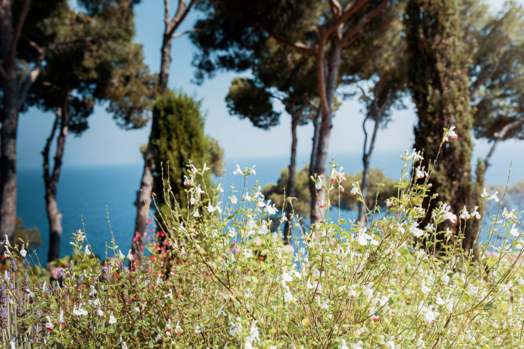 flowers and trees along sea coast of Blanes, Spain, Barcelona wedding